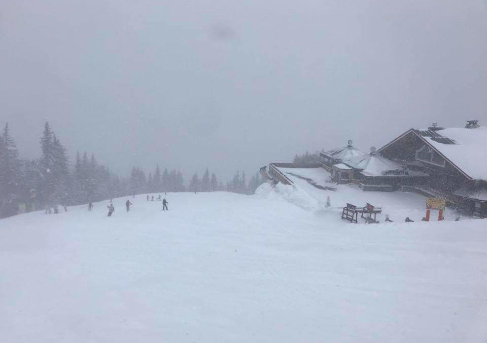 It is Snowing in Schladming!